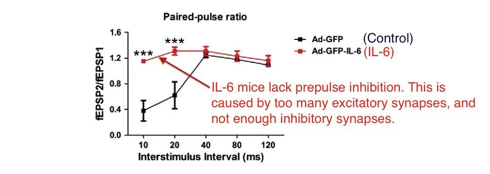 Wei IL6 prepulse inhibition