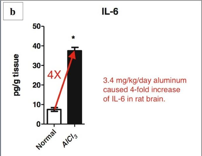 Al-IL-6-s