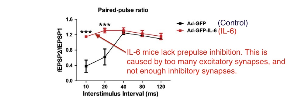 Wei IL6 prepulse inhibition